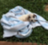 Baby got a bath-2.jpg