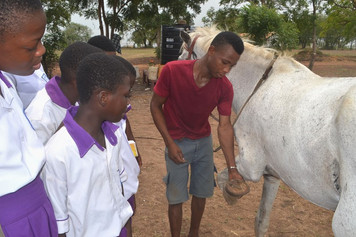 LIPREC field trip Richard taking care of sixteen year old strong Massiah  (2).JPG