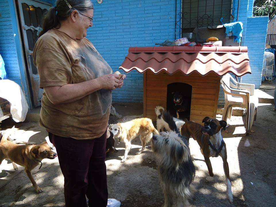 Pilar with her rescue dogs at the Nereida Montes de Oca Sanctuary