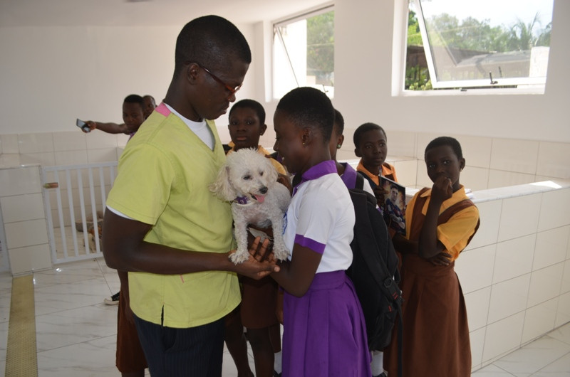 Students are taught how to hold small dogs