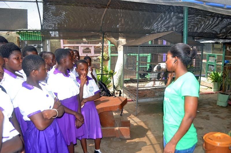 Village Pets and Gardens dzorwulu 5.JPG
