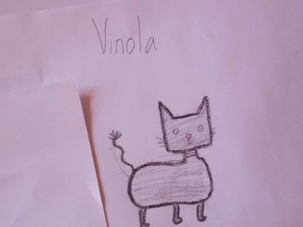 During Feeding & Dipping Days, the kids draw pictures of their pets