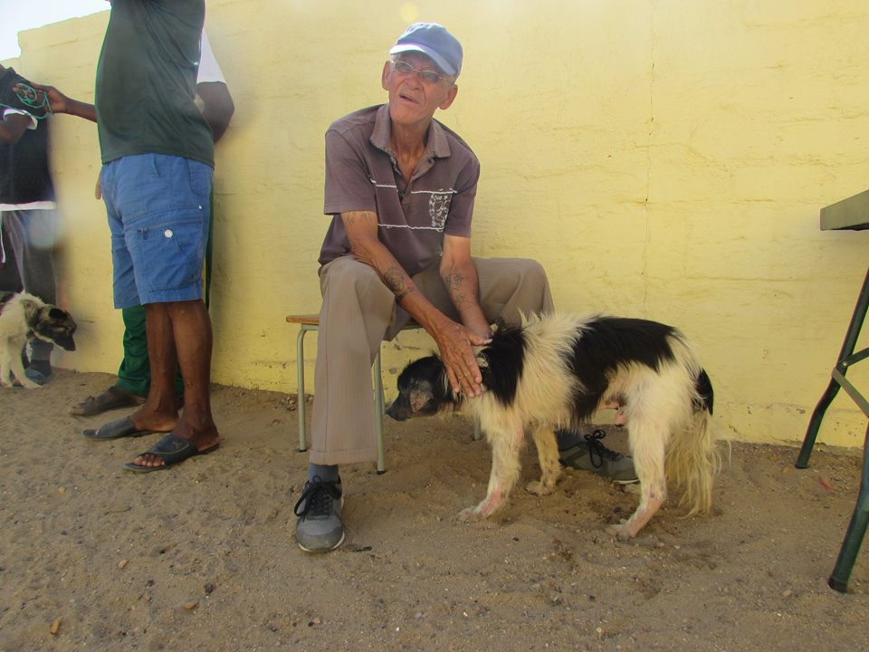Buchter's owner brought him to the clinic to be treated for mange