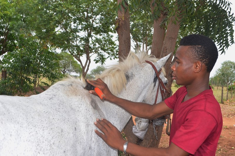 LIPREC field trip Richard taking care of sixteen year old strong Massiah  (1).JPG