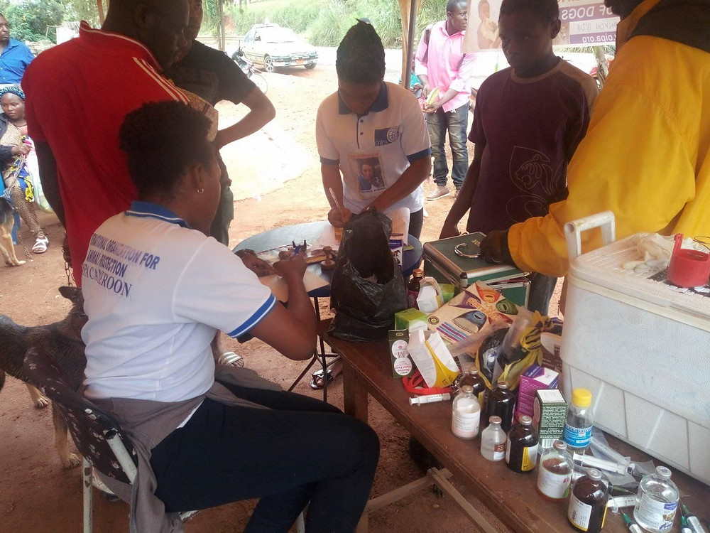 At the OIPA-Cameroon clinic