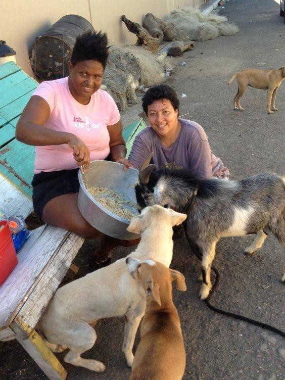 Deborah (kneeling) feeding street dogs and a goat!