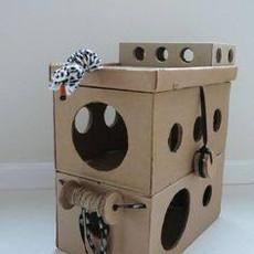 SA-DRC toys for cats.jpg