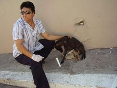 Deborah caring for an abused dog
