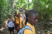 Tafi Atome with monkey 2.JPG