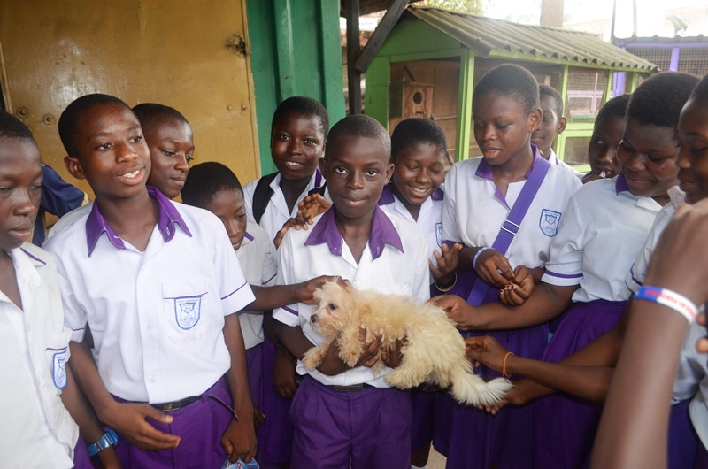 Students get to hold a furry white puppy