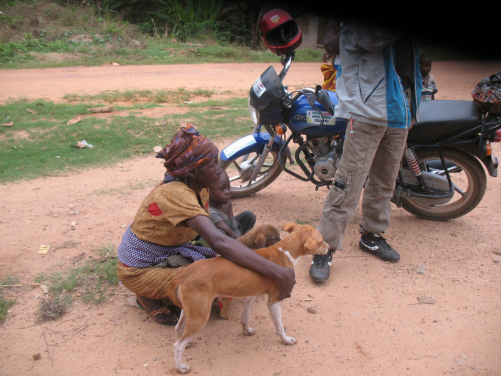 Animal Care Clinic clients