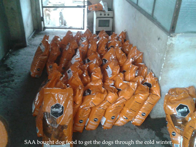 SAA bought dog food in early 2014 with AKI $
