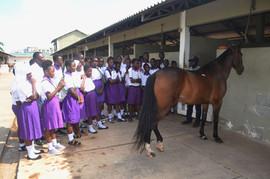Field Trip to Accra Polo Club