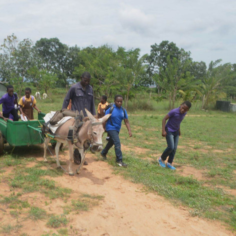 Students learn about donkeys at LIPREC