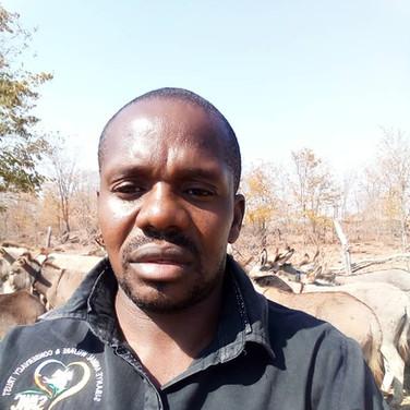 Alfred Sihwa, Director