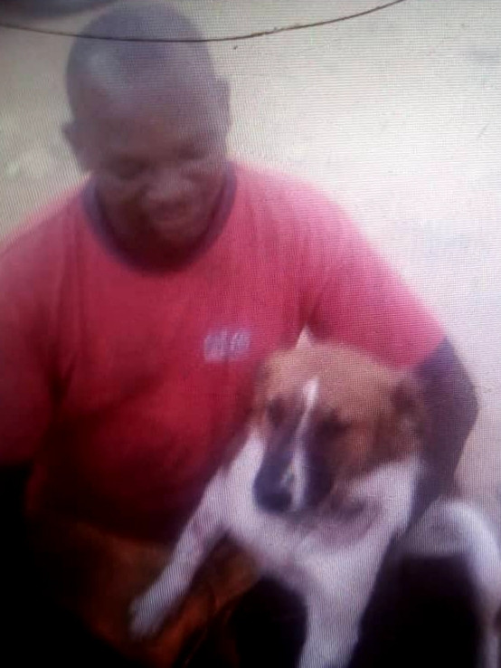 Although blurry, this shows Wagter, after treatment, with his owner