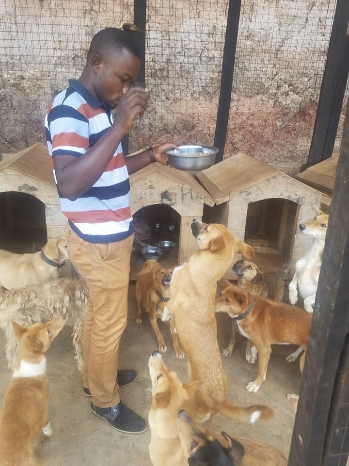 animal shelter in the DRC-Bakuvu