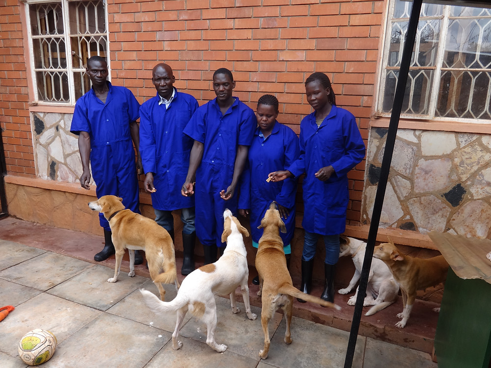 USPCA Haven staff in their new uniforms