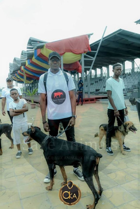 Kinshasa dog walk-Oct