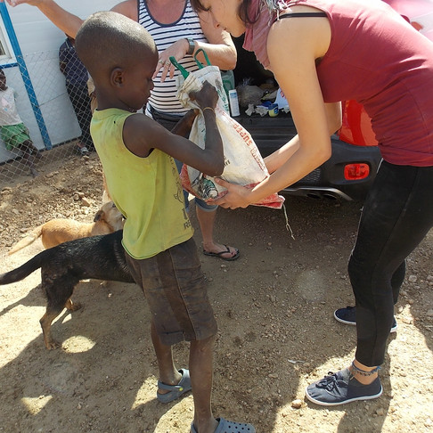 Your support feeds and provides care for pets in Katutura, Namibia: November-February 2018 update