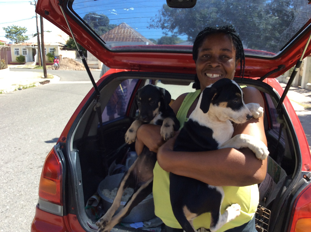 Jennifer adopted 2 pups rescued from a squatter house