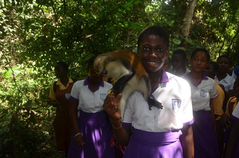 Students fed the monkeys bananas