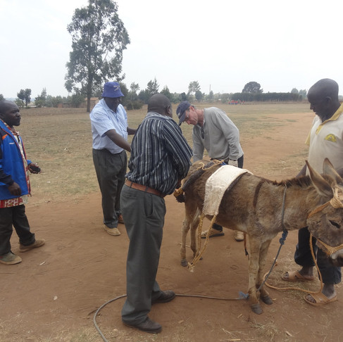 TAWESO Expands to Southern Tanzania to Help Donkeys!