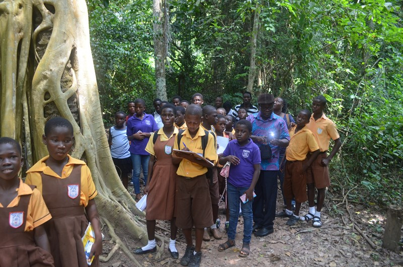 Students learn about forest vegetation at Tafi Atome