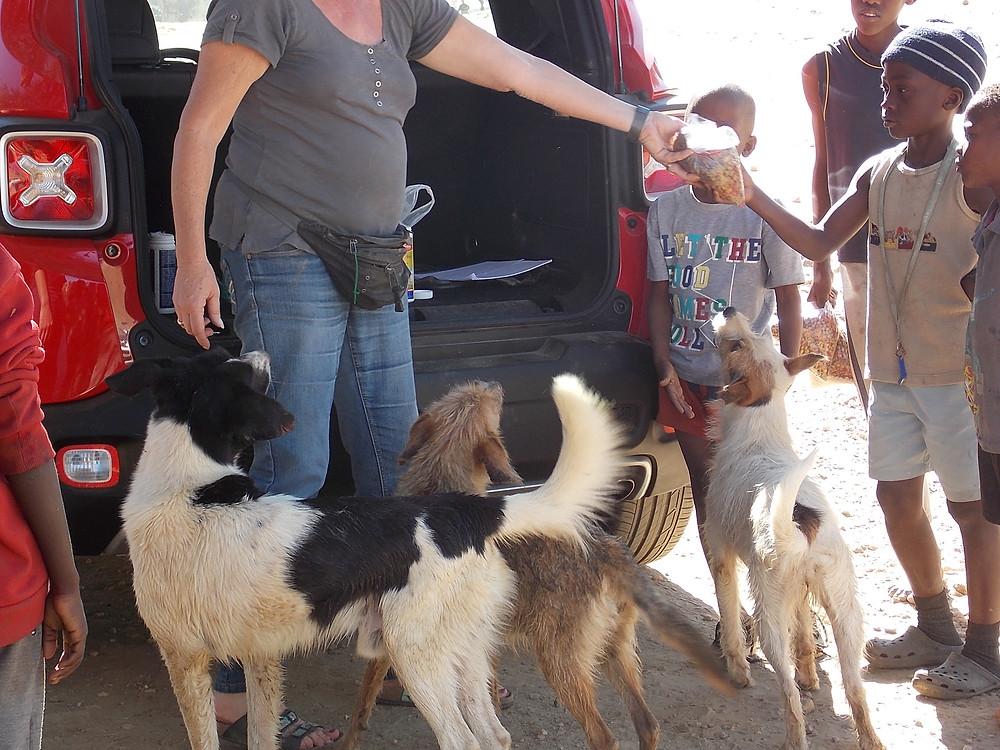 3 June Katutura visit-handing out pet food