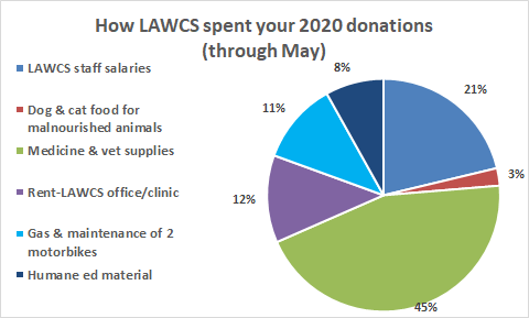 LAWCS pie chart through May.png