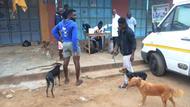 Sept 12 rabies clinic at Dome Konka.JPG