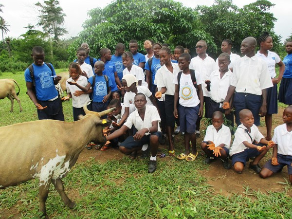 Student-led livestock welfare campaign