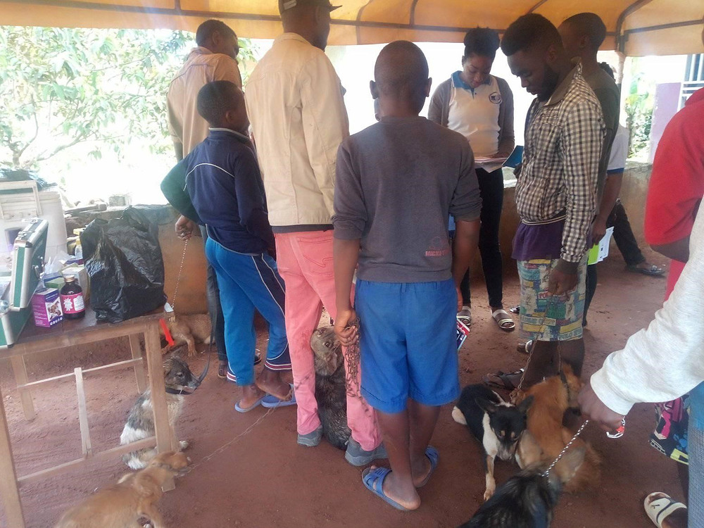 OIPA-Cameroon's clinic attracted many more clients than could be served