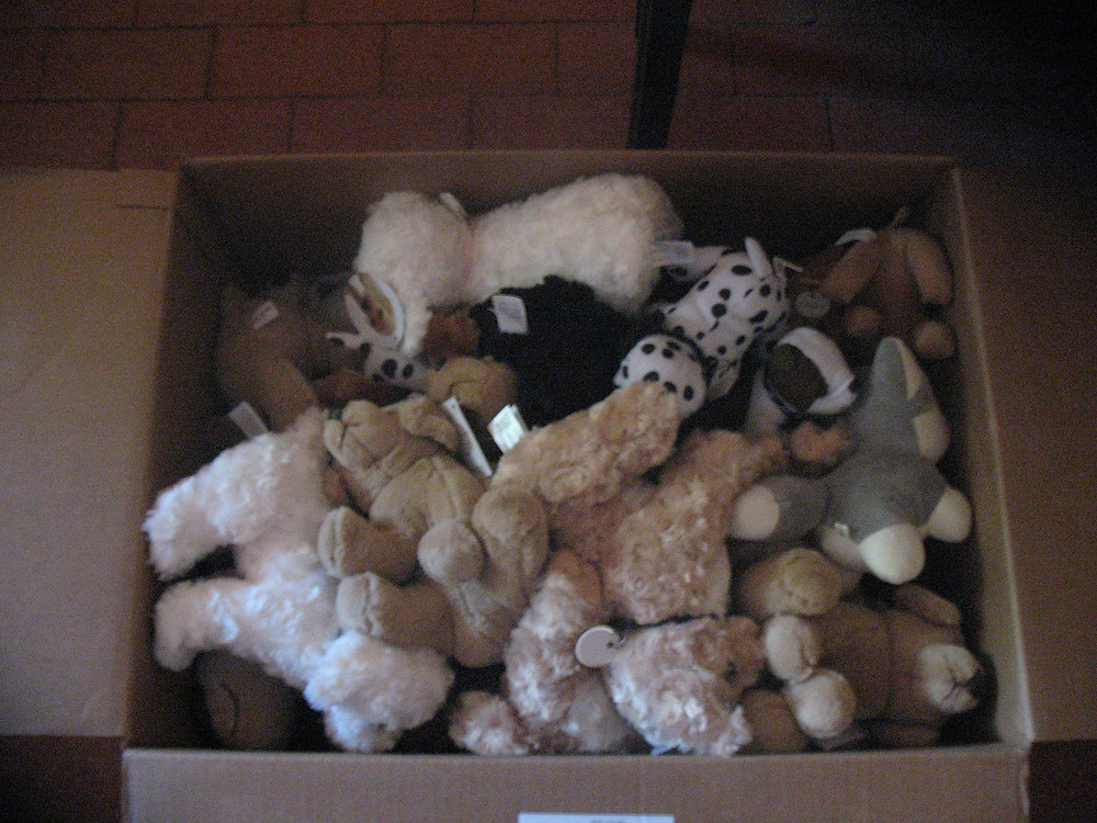 stuffed animals for Humane Ed