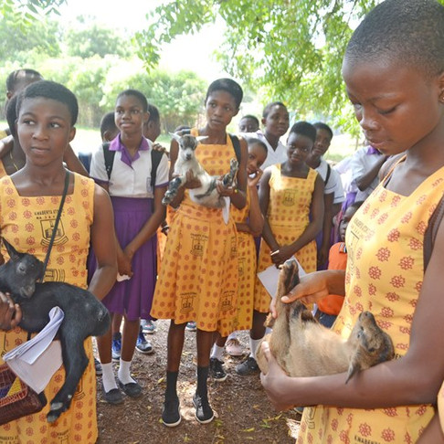 Ghana SPCA Takes Humane Ed Students to University (thanks to AKI donors)