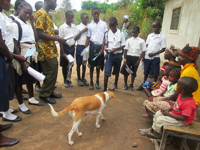 Voinjama students promoting improved animal care
