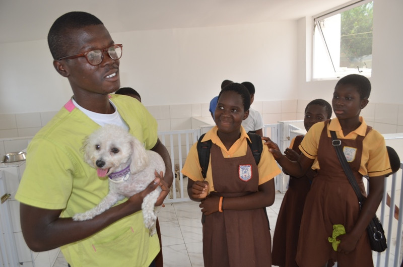 At Lemla, students learn about dog grooming and care