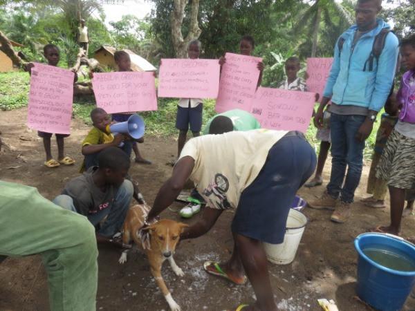 Student-led community dog wash