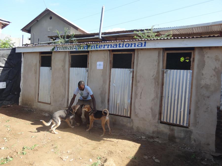 TAWESO kennels