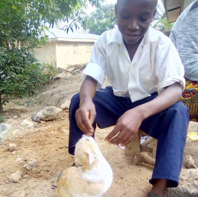 Cat awareness Month-Januaryg