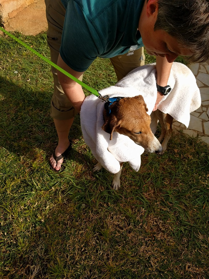 Rosie being dried off with a very soft towel!