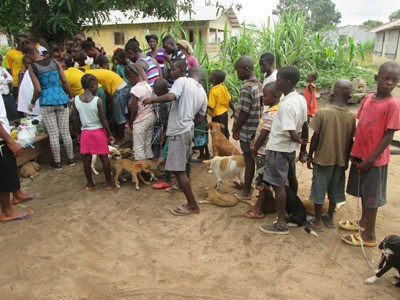 Kormah school dog clinic