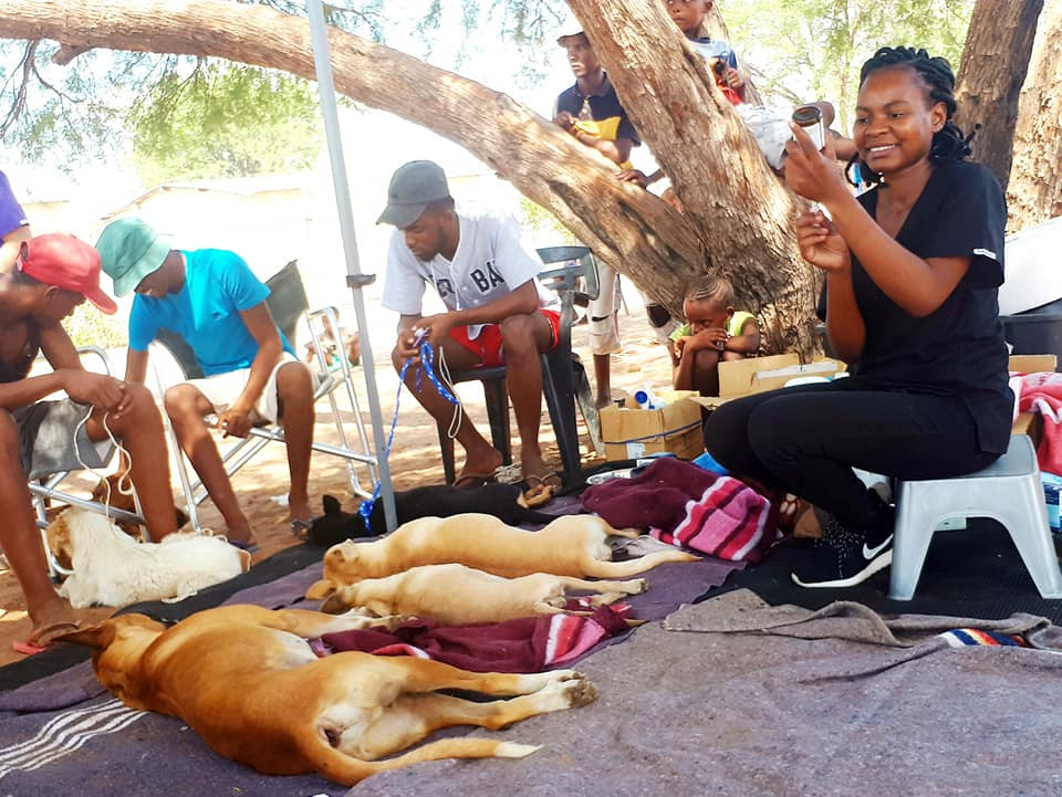 March HAH clinic (picture by Mobile Animal Clinic Namibia)