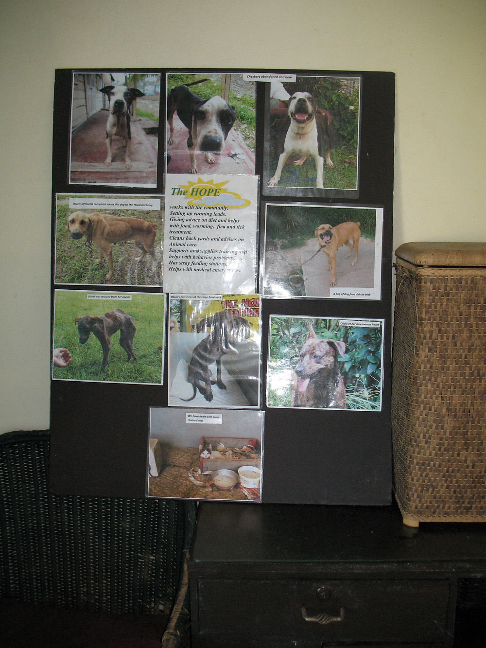 Poster at Hope Sanctuary showing the good and the bad