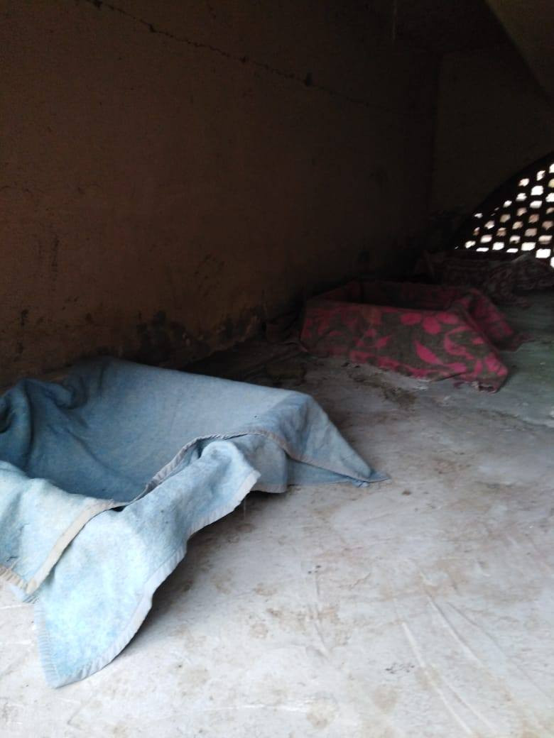 A comfortable, dry area for the dogs to sleep-stays cool in the summer, warm in the winter