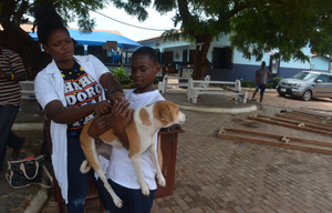 Community rabies vaccination clinic