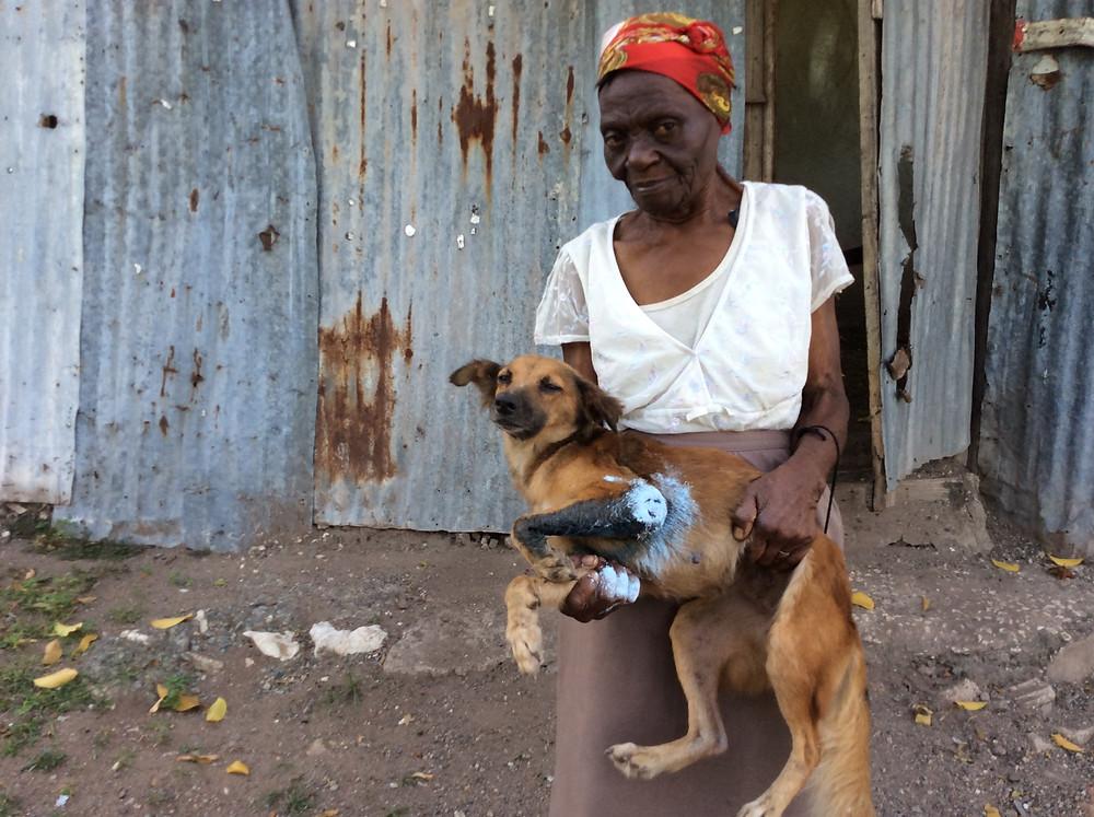 Woman's dog had maggot-infested leg that Deborah treated