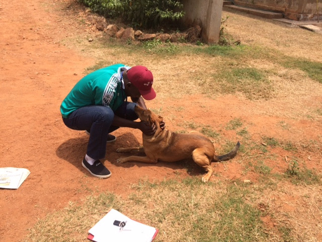 Simba remembers Alex