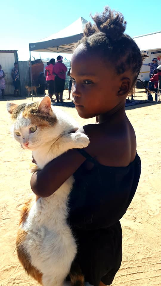 Cat at AH-Namibia clinic gets treated thanks to AKI
