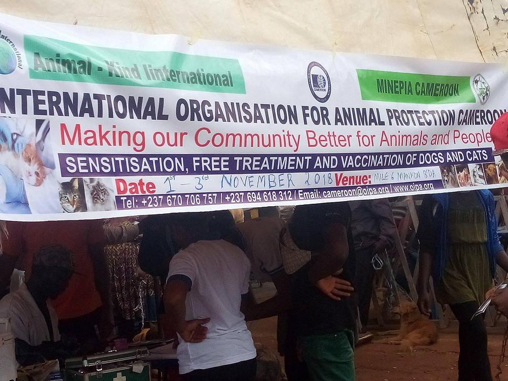 OIPA-Cameroon's Vet Clinic & Sensitization